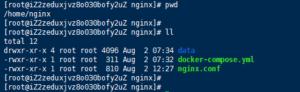 Docker下Nginx直接访问静态页面与反向代理到tomcat静态网页文件